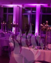 Hochzeit, Fulda, DJ, Illumination, Hochzeit feiern, LED-Spots, Uplighting